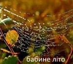 БАБИНЕ ЛІТО (народна легенда)